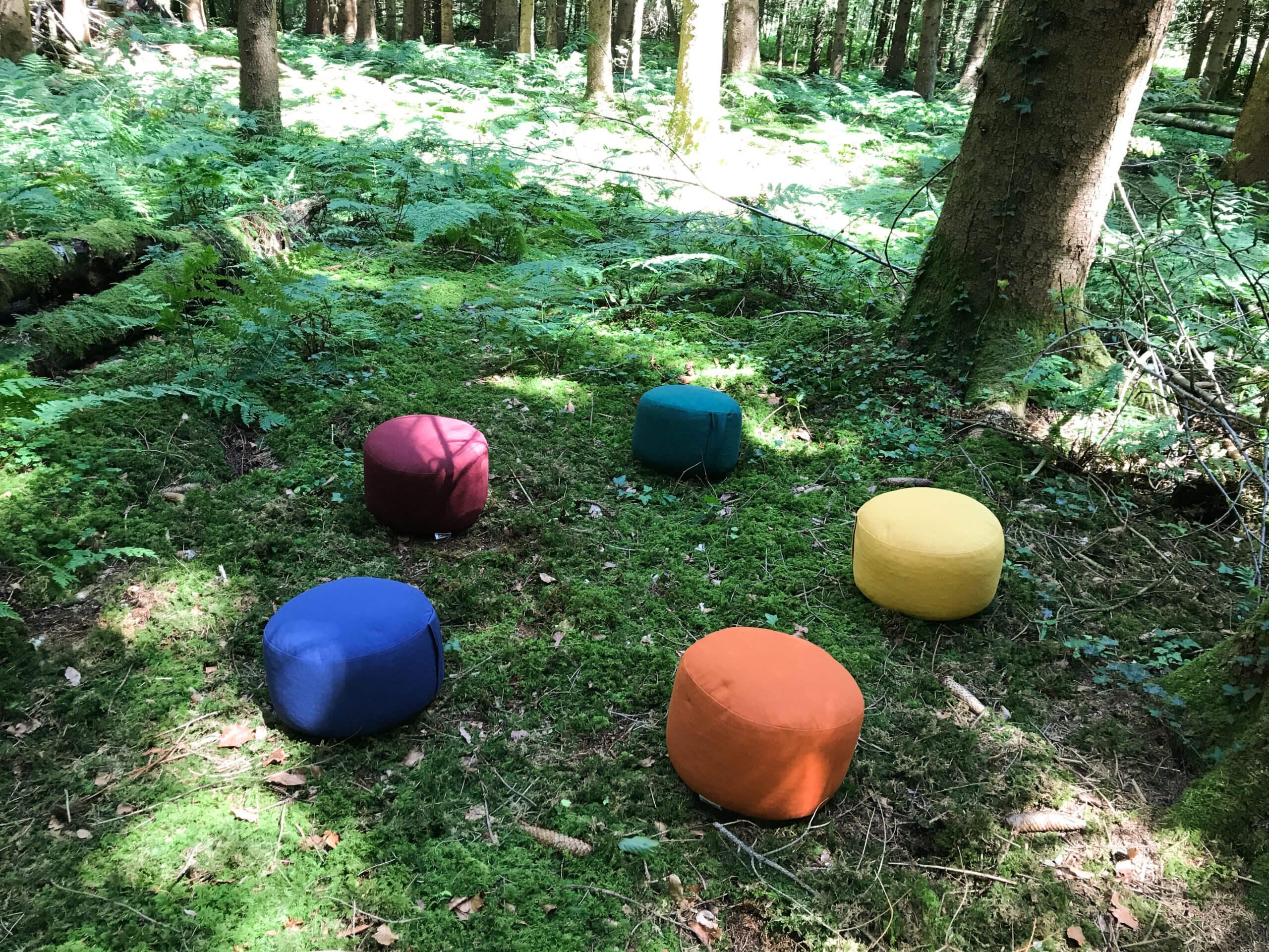 Sitzkreis im Wald